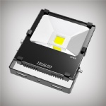 50W LED Floodlight CP Series
