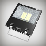 250W LED Floodlight CP Series